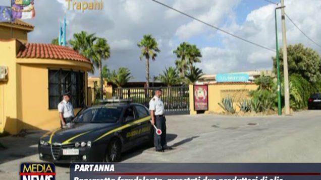 Trapani. Guardia di Finanza arresta due importanti produttori di Olio d'Oliva