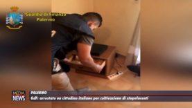 GdF. Arrestato un cittadino italiano per coltivazione di stupefacenti