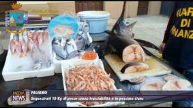 Palermo. Sequestrati 15 chili di pesce senza tracciabilità e in pessimo stato