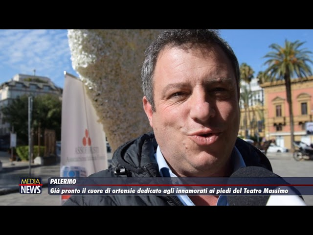 Palermo. Già pronto il cuore di ortensia dedicato agli innamorati