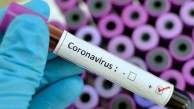 coronavirus-provetta