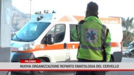 Palermo. Nuova organizzazione reparto ematologia del Cervello