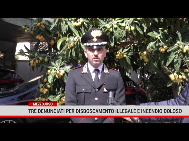A Mezzojuso, tre denunciati per disboscamento illegale e incendio colposo