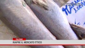 Palermo. Riapre il mercato ittico