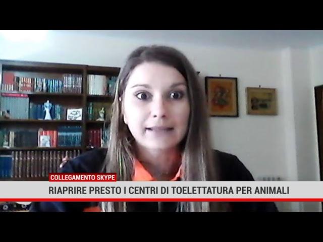 Palermo. Riaprire presto i centro di toelettatura per animali
