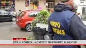 Palermo. Sicilia: controlli a tappeto sui prodotti alimentari