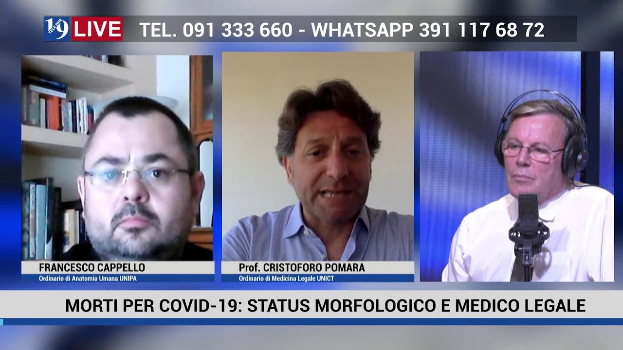 19 LIVE MORTI PER COVID 19 MORFOLOGICO E MEDICO LEGALE FRANCESCO CAPPELLO e CRISTOFORO POMARA