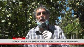 MANCA L'ACQUA PER RAGIONI BUROCRATICHE, GLI AGRICOLTORI IN PROTESTA