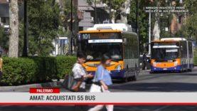 Palermo. Amat: acquistati 55 bus