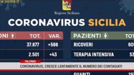 Palermo. Coronavirus, cresce lentamente il numero dei contagiati