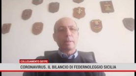 Palermo. Coronavirus: il bilancio di Federnoleggio Sicilia