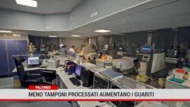 Palermo. Meno tamponi processari, aumentano i guariti