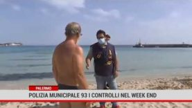 Palermo. Polizia municipale: 93 i controlli nel week end