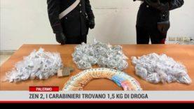 Palermo. Zen 2, i carabinieri trovano 1.5 kg di droga