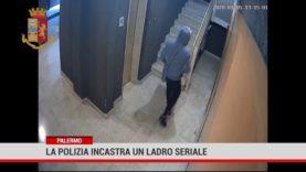 La polizia incastra un ladro seriale