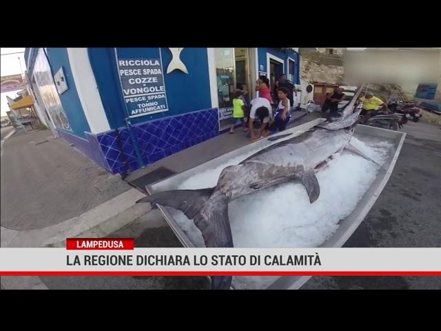 Lampedusa. La Regione dichiara lo stato di calamità