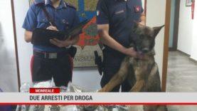 Monreale. Due arresti per droga