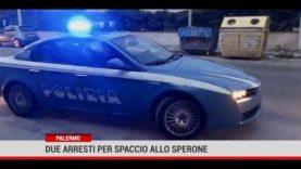 Palermo. Due arresti per spaccio allo Sperone