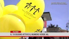Palermo. il 19 giugno attivo il numero verde Ail