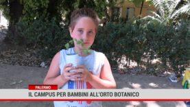 Palermo. Il campus per bambini all'Orto Botanico