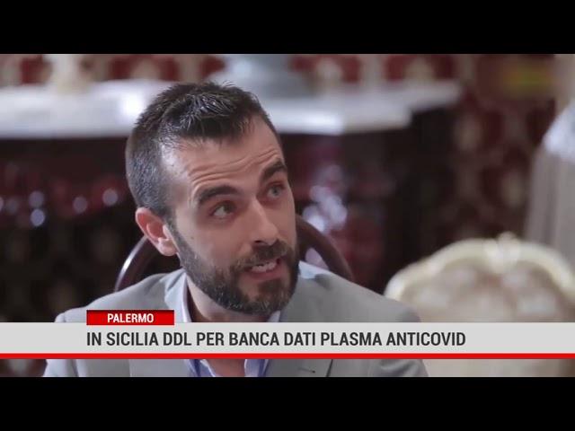 Palermo. In Siciia ddl per banca dati plasma anti-Covid