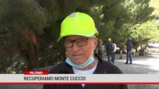 Palermo. Recuperiamo Monte Cuccio