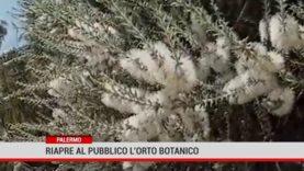 Palermo. Riapre domani l'Orto Botanico