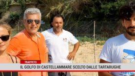 Trappeto. Il golfo di Castellammare scelto dalle tartarughe