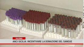 Palermo. Appello dell'Anci ai sindaci dell'isola per incentivare la donazione di sangue