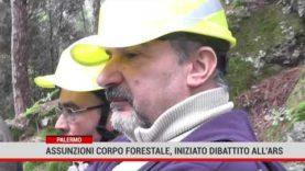 Palermo. Assunzioni corpo forestale, iniziato dibattito all'Ars