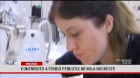 Palermo. Contributo a fondo perduto: in Sicilia presentate quasi 80 mila richieste.