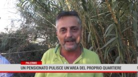 Palermo. Nel quartiere Santa Rosalia un pensionato riporta il decoro in una vasta area verde