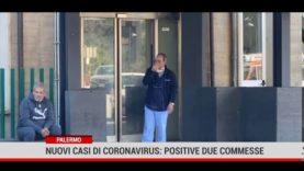 Palermo. Nuovi casi di coronavirus: positive due commesse