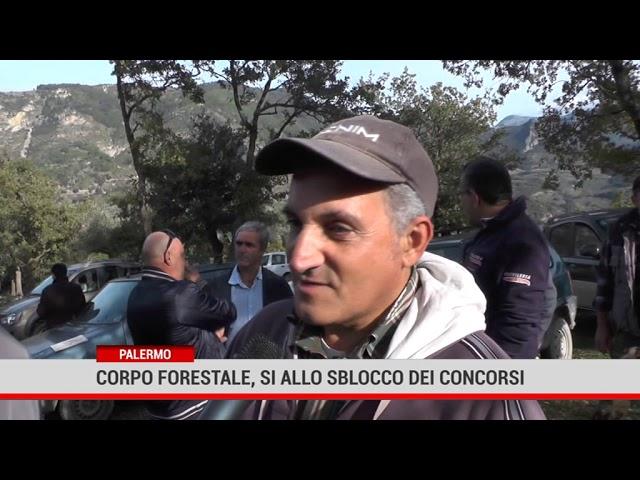 Palermo. Regione :Corpo forestale, sì allo sblocco dei concorsi