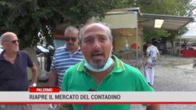 Palermo. Riapre il  mercato del contadino
