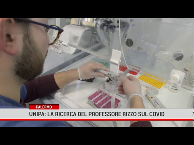 Unipa: la ricerca sulla reale mortalità in Italia per covid 19