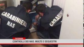 Favignana. Controlli a tappeto dei Carabinieri alle attività commerciali