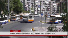Palermo.  L'appello dei  sindacati di Amat: