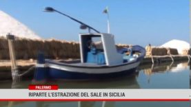 Palermo. Riparte l'estrazione del sale in Sicilia