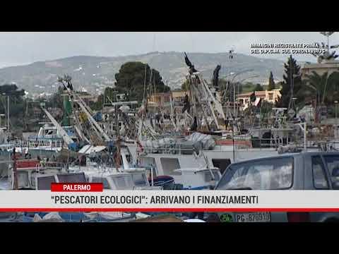 Ripulire il mare dalla plastica. Fondi ai pescatori ecologici