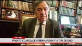 Palermo. Entro ottobre nuovo ospedale veterinario di via del Tiro a Segno