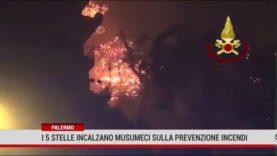 Palermo. I 5 stelle incalzano Musumeci sulla prevenzione incendi