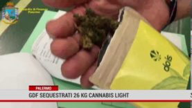 Palermo. Sequestrati 26 kg di Cannabis light