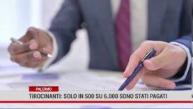 Palermo.Tirocinanti: solo in 500 su 6.000  sono stati pagati