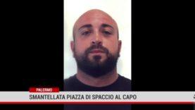 Droga. Operazione Cuncuma a Palermo, 11 arresti
