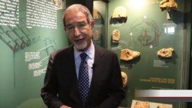 Francavilla. Inaugurato il nuovo Museo Archeologico