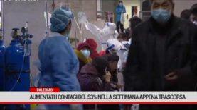 Palermo. Aumentati i contagi del 53% nella settimana appena trascorsa