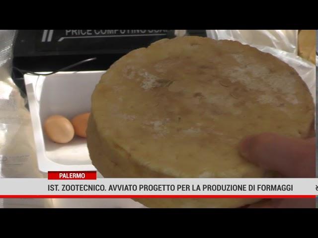 Palermo. Istituto Zootecnico, avviato progetto per la produzione di formaggi