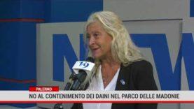 Palermo. No al contenimento dei dani nel Parco delle Madonie
