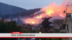 Palermo. Vento di scirocco al Sud